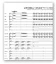 ベルリオーズ : 幻想交響曲より 第5楽章「サバトの夜の夢」